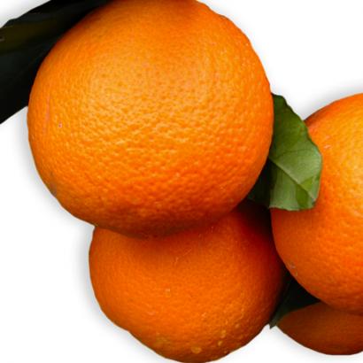 arancia-vaniglia